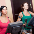 Stock Photo: Young women in gym on stepper machine