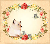 Vintage birthday card with little siamese kitten, roses and — Stock Vector
