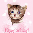 Happy birthday greeting card with little kitten on the pink ba — Stock Vector #7308682