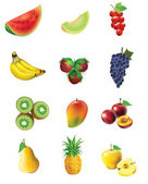 Set of fruits and vegetables — Stock Vector