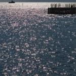 The sea sparkles — Stock Photo #6759297