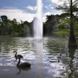 Stock Photo: Lake with fountain