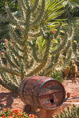 Wine cask. — Stock Photo