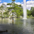 Fountain, lake and Crystal palac - Stock Photo