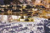 イエローストーン国立公園の温泉 — ストック写真