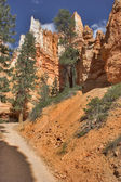 Vägen till en kanjon — Stockfoto