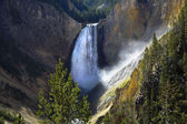 The falls in a canyon — Stock Photo