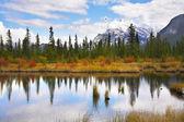 Charmig liten sjö — Stockfoto