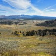 Yellowstone national park - Foto Stock