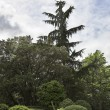Stock Photo: Fine green park in environs Madrid