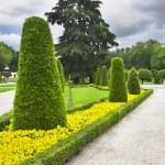 Park Buen-Retiro in Madrid — Stock Photo #7353298