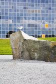 A gaivota em uma pedra — Foto Stock