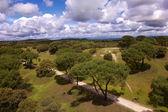 Enorme parco di madrid — Foto Stock