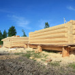 Construction of the new wooden building — Stock Photo #6836863