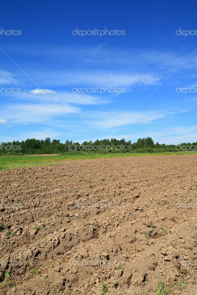 Plow field — Stock Photo #6838514