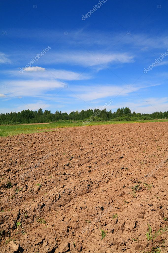 Plow field  Stock Photo #6838598