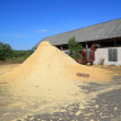 Sawdust — Stock Photo #6853247