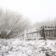 Winter landscape — Stock Photo #6882138