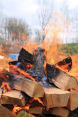 Burninging firewood in campfires — 图库照片