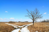 Snow road on field — Stock Photo