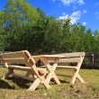 Stock Photo: Garden furniture on green glade
