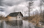 Old wooden house in water — Stock Photo
