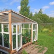 Wooden hothouse in summer garden — Stock Photo