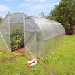 Plastic hothouse in rural homestead — Stock Photo #6914571