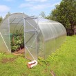 Plastic hothouse in rural homestead - Stock Photo