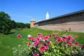 Flowerses on background of the old fortress — Stock Photo