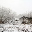 Stock Photo: Old fence in snow