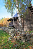 Aging birch near wooden building — Stock Photo