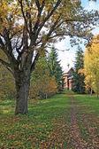 Wooden chapel in autumn wood — Stock Photo