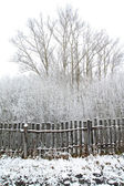Old gray fence in snow — Stock Photo