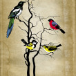 Birds on tree on grunge background — Stock Photo