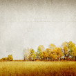 Autumn landscape on grunge background — Stock Photo