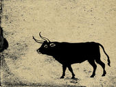 Oxen on grunge background — Stock Photo