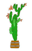 Green cactus on white background, vector illustration — Stock Vector