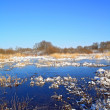 Stock Photo: Autumn ice on freeze marsh