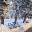 Iron bench in town park — Stock Photo