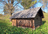 Old rural house amongst tree — Stock Photo