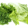Greens - Stock Photo