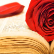 Rose on book — Stock Photo #7291293