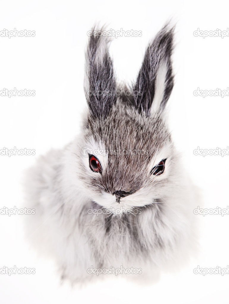 Rabbit on a white background, toy — Stock Photo #7290762