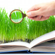 Magnifier and the book — Stock Photo