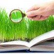 Royalty-Free Stock Photo: Magnifier and the book