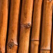 Bamboo background - Stock fotografie