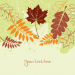 Stock Vector: Autumn background with leafs