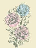 与罂粟花卉背景 — 图库矢量图片