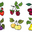 Set of fruits and berries — Stock Vector